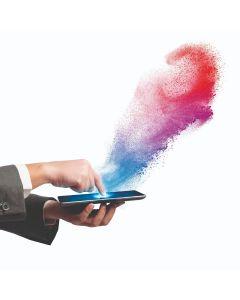 Digitale Farbtonfindung der Prozess in der Werkstatt (Teil 2) 2020 - Lesonal